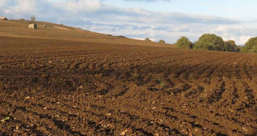 przygotowanie gleby pod zasiew